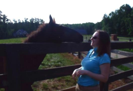 horse apex nc