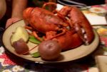 long island lobster