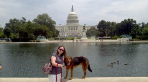 dog in washington dc