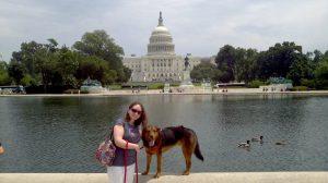 dog in washington dc