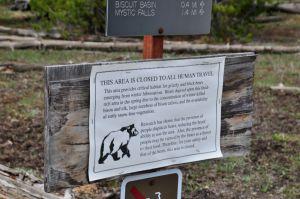 hiking yellowstone