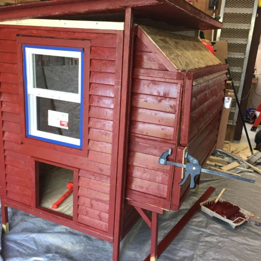 chicken coop paint