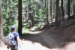 merced grove hike