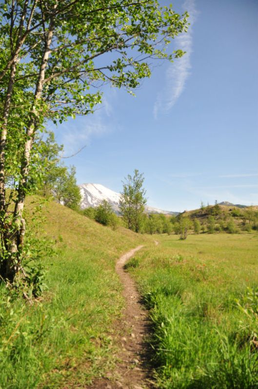 Mount St Helen Hiking