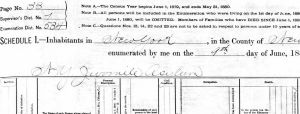 NY juvenile asylum census records