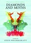 steve wechselblatt book cover