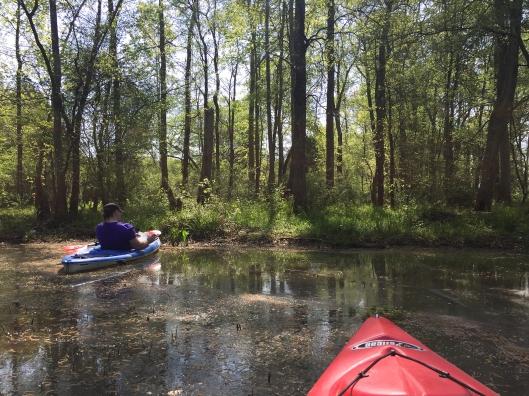 paddle trip