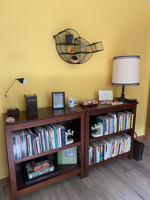 bookshelves with bird shelf