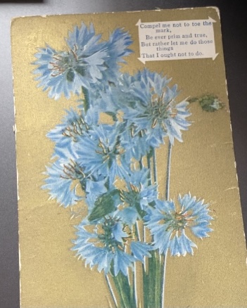 old postcard with blue flowers